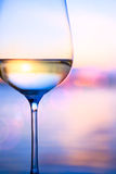 在夏天海背景的艺术白葡萄酒 库存图片