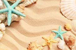在夏天海滩和沙子的贝壳作为背景 截去的查出的路径海运轰击白色 免版税库存图片
