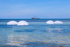 在夏天热带海滩的白色伞 库存照片