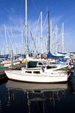 在夏天的游艇端口在丹麦19-A 图库摄影
