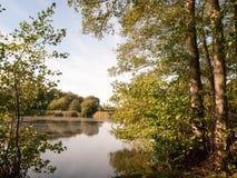 在夏天秋天绿色黄色之外的美好的湖场面 免版税库存照片