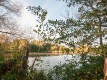 在夏天秋天绿色黄色之外的美好的湖场面 库存照片