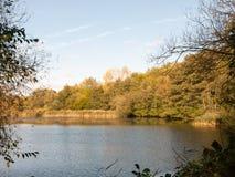 在夏天秋天绿色黄色之外的美好的湖场面 库存图片