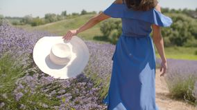 在夏天自然的优美的俏丽的妇女欣喜 股票视频