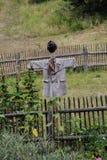 在夏天草甸中间的稻草人 库存图片