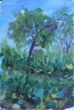 在夏天草甸的树,油画 库存照片