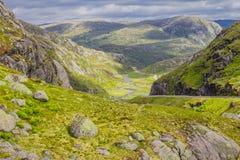 在夏天路的美丽的景色 Forsand,罗加兰,挪威 图库摄影