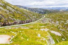 在夏天路的美丽的景色 Forsand,罗加兰,挪威 库存图片