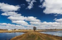 在夏天领域和云彩的乡下公路 免版税库存图片