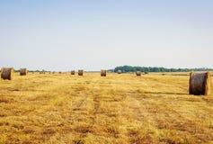在夏天领域的堆干草 免版税库存图片