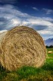 在夏天领域的干草堆 库存图片