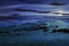 在夏天风景的三小山在晚上 免版税库存图片
