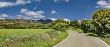 在夏天风景的乡下公路 免版税库存照片