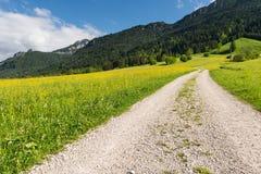 在夏天风景的石渣道路与山 免版税库存图片