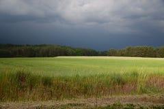 在夏天风暴之前 免版税图库摄影