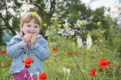 在夏天,公园是一个小女孩在花床上 库存照片