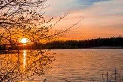 在夏天Forest湖的日落 免版税库存照片