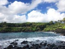 在夏威夷和树的海滩 库存图片