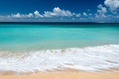 在夏威夷海滩全景的波浪 图库摄影