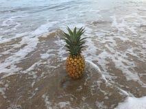 在夏威夷海滩的菠萝 免版税库存图片