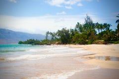 在夏威夷海滩的晴天 免版税库存照片