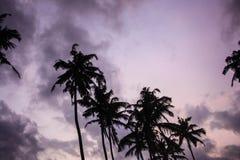 在夏威夷热带海岛上的日落  太阳、天空、海、波浪和沙子 库存图片