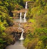 在夏威夷的大岛的Umauma瀑布 免版税图库摄影