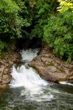 在夏威夷的小瀑布 免版税库存图片