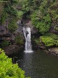 在夏威夷的避风港 免版税库存照片