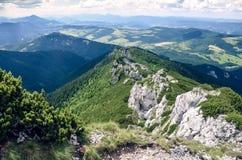 在夏日期间,从高峰Sivy vrch的看法在西部Tatras Rohace山在斯洛伐克,东欧, 库存图片