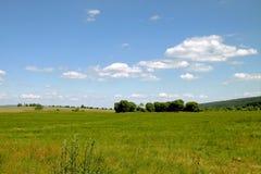 在夏日期间,风景和天空 免版税图库摄影