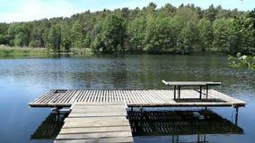 在夏时的湖风景 乡下在哈维尔兰县在德国 股票视频
