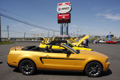 在夏洛特汽车赛车场的第50个周年Ford Mustang事件 库存图片