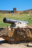 在外部的古老火炮枪 免版税库存图片