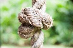 绳索结在外面庭院里 免版税库存图片