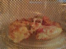 在外面微波的比萨 库存照片
