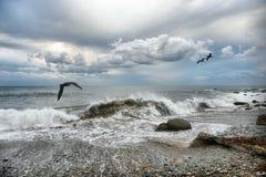 在多云天气的海浪 免版税图库摄影