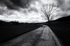 在多云天空下的一条弯曲的乡下公路与在右边的一个树剪影 免版税库存照片