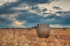在多云天空的被收获的麦田 免版税库存照片