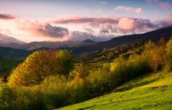 在多云日落的树木丛生的小山春天 库存图片