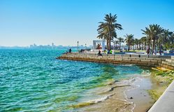 在多哈,卡塔尔享受海景 免版税库存图片
