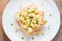 在多士的炒蛋,装饰用葱 免版税库存照片