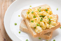 在多士的炒蛋,装饰用葱 库存照片