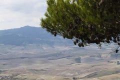 在多小山风景的一棵树 免版税库存图片