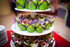 在多平实排的微型杯形蛋糕用不同的颜色 免版税库存照片