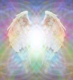 在多彩多姿的矩阵网的天使翼 向量例证
