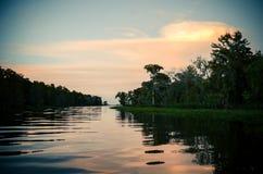 在多沼泽的支流的日落 库存图片