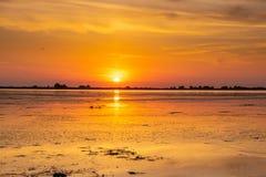 在多瑙河三角洲的日落在Fortuna湖,罗马尼亚 图库摄影