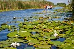 在多瑙河三角洲渠道的小船  库存照片