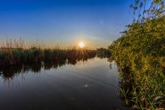 在多瑙河三角洲的日出 库存图片